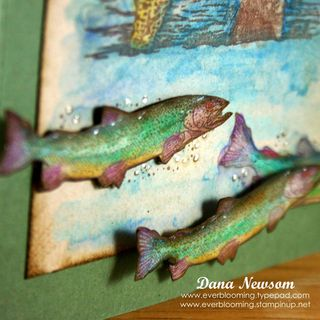 Tobins Card detail 2- Dana Newsom