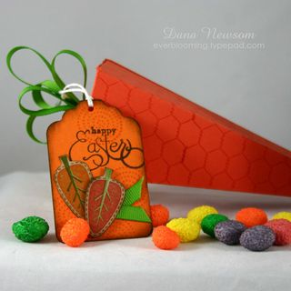 Carrot box - dana newsom