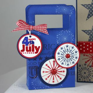 4th of july bag - dana newsom
