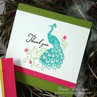 Peacock card 1 - dana newsom
