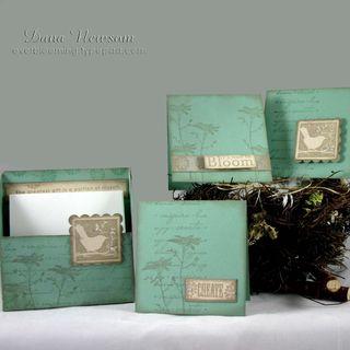 Bird box card set - dana newsom