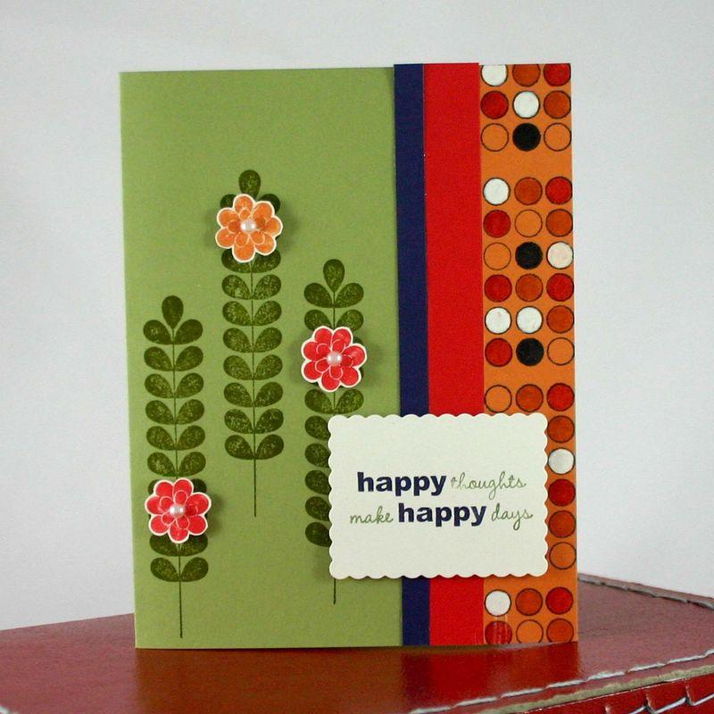 HAPPY THOUGHTS - DANA NEWSOM