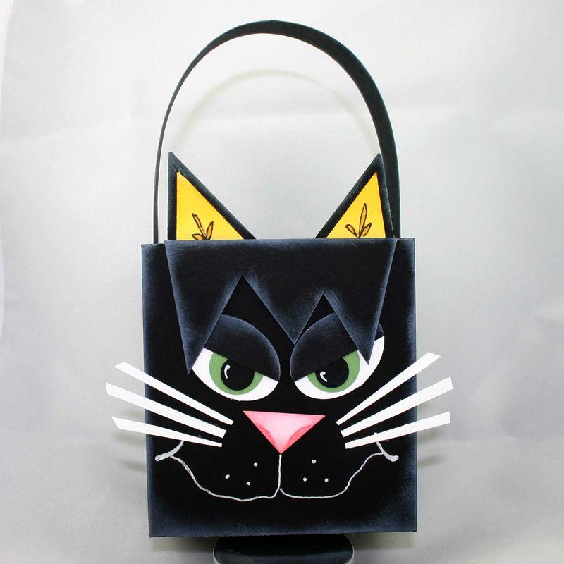 Cat bag - dana newsom