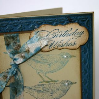 Birthday Wishes Bird Card detail- dana newsom