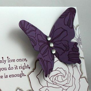 Butterfly and roses detail - dana newsom