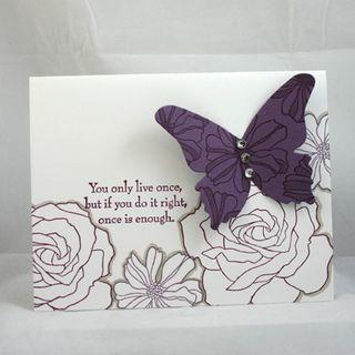 Butterfly and roses - 72 dpi -  dana newsom
