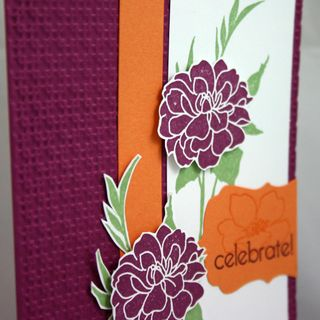 Celebrate with flowers card detail - dana newsom