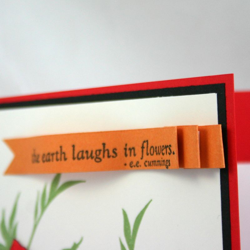 Laugh in Flowers card detail 2- dana newsom