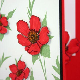 Laugh in Flowers card detail 3- dana newsom