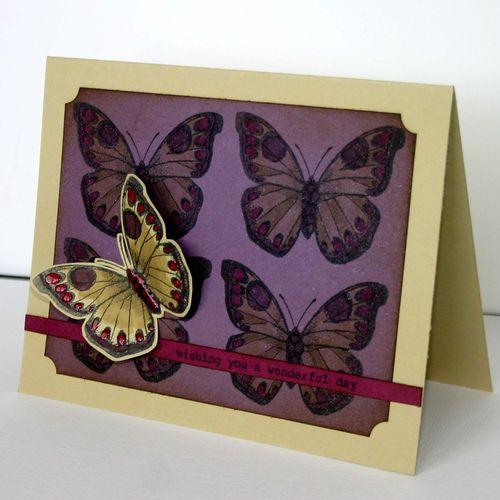 Butterfly wishes card 2- dana newsom